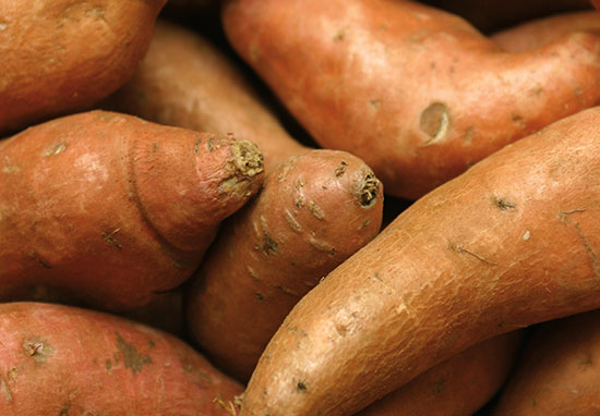 10174-6_Spring_Wellness_SweetPotato_550x382.jpg