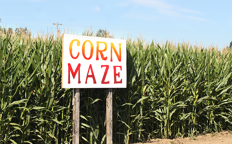 Sign to a corn maze entrance.