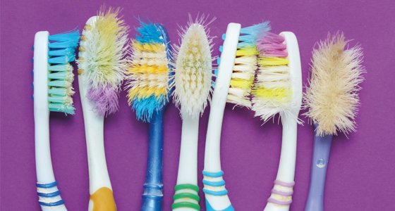 12267-6 5Years-Toothbrushes-560x300.jpg