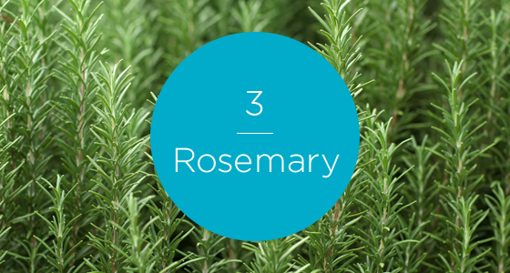 12267-7 Herbs-Rosemary-560x300_numbered.png