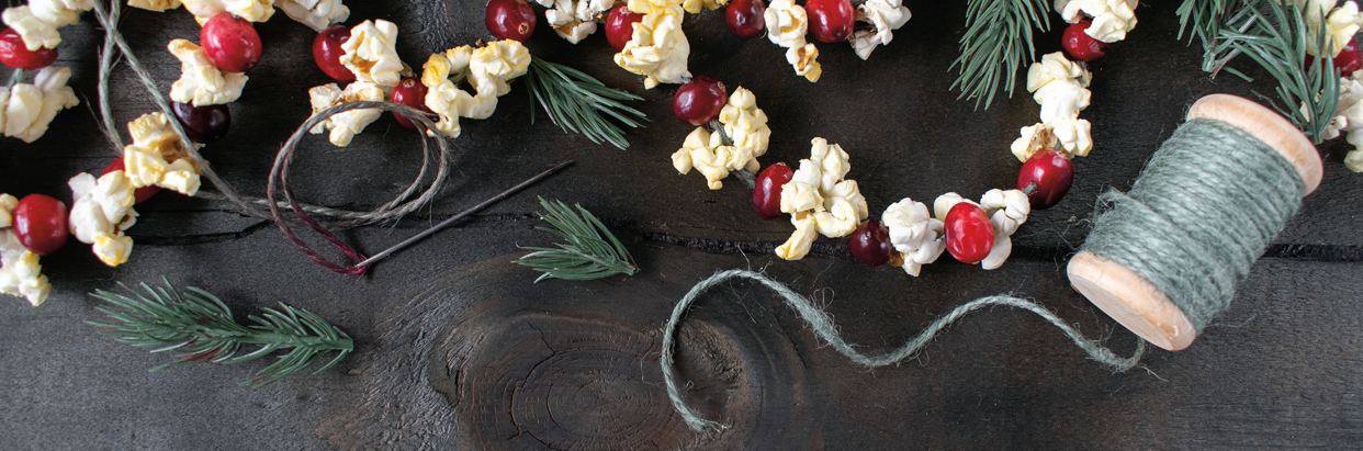 popcorn-and-cranberry-garland-1242x411.jpg